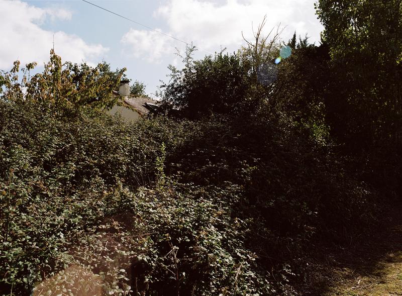 092012-PB-HAMON03